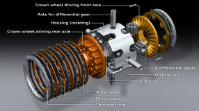 Crown gear differential